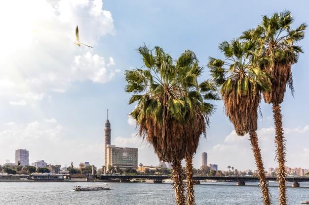 torre-cairo-nilo-vistas-ciudad-egipto_400112-300